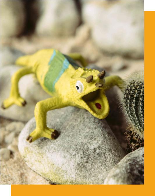 Mountain Chameleon-Rettile diffuso in Africa Orientale